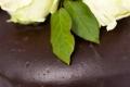 Wedding-1-950x316